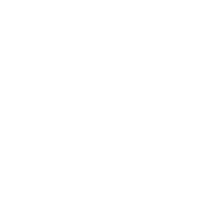 The Point at Bella Grove