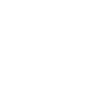 New Market Properties